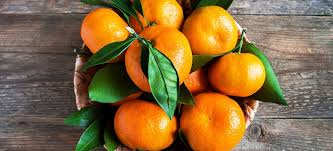 tangerine fruit benefits nutrition