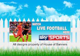 Sky Sports Pvc Banner Vinyl Advertising Printed Signs Pub Banner Outdoor Indoor For Fence Or Garage Wall 6x2ft Amazon Co Uk Kitchen Home