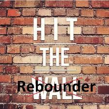 lacrosse rebounder walls nets