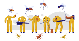 Tips for Choosing the Right Pest Control Service - Imagine Care