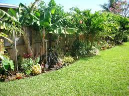 Diy Tropical Fence Border Garden Backyard Garden Design Fence Landscaping Small Backyard Gardens