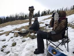 Extreme weather and a record day highlight annual golden eagle migration |  Outdoors | helenair.com