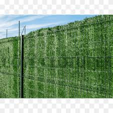 Hedge Chicken Wire Fence Trellis Garden Fence Furniture Outdoor Structure Fence Png Pngwing