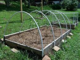 Building Garden Fence Boxes