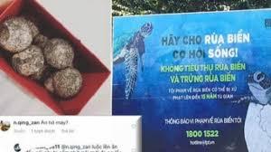 Mua trứng rùa biển rồi luộc ăn còn khoe lên mạng khi du lịch Côn Đảo, cô gái  khiến dân mạng phẫn nộ