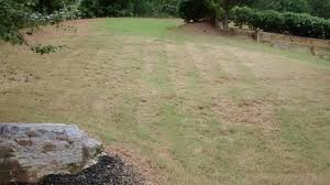 Erosion Control From Neighbor S Property