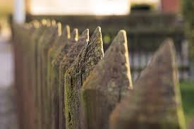 Free Images Plant Sunlight Leaf Flower Rustic Pile Green Autumn Weathered Close Up Macro Photography Garden Fence Wood Fence Battens Fence Post Paling Plank Fence 4132x2755 639950 Free Stock Photos Pxhere