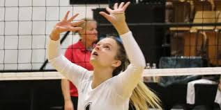 Abby Cole   Ozark Sports Zone