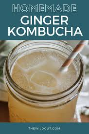 homemade ginger kombucha the wild gut