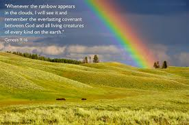 genesis illustrated after the rain comes the rainbow