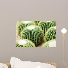 Cactus Wall Decal Wallmonkeys Com