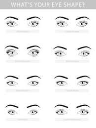 understanding diffe eye shapes