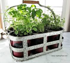 inexpensive diy indoor herb garden kit