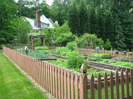 13 Easy And Aesthetically Appealing Garden Fence Ideas With Images Fenced Vegetable Garden Small Garden Fence Backyard Fences