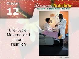 life cycle maternal and newborn child
