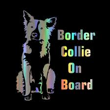 Car Sticker Border Collie On Board 17 1 15cm Funny Car Decal Reflective Laser Vinyl Car Sticker 3d Car Styling Black Silver Car Stickers Aliexpress