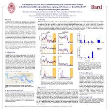 Bard Summer Research Institute Poster
