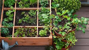 9 awesome balcony garden ideas and tips