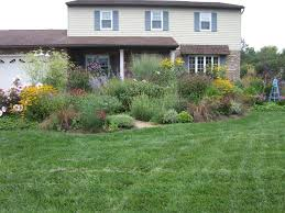 front yard makeover from lawn to
