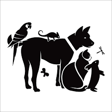 Amazon Com Cat Dog Silhouette Wall Decal Dog Wall Vinyl Decals For Walls Pet Shop Veterinar Clinic Zoo Shop Grooming Salon Inspirational Wall Decals For Dogs Cats Animals Pets Dog