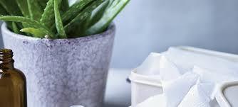 homemade antibacterial wipes live