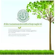 Prเกษตร สุราษฎร์ธานี - Posts