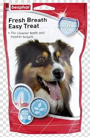 dog treats transpa background png