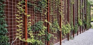 Hogwire Fencing With Steel Panel Behind It Grow Vines Up The Wire Small Space Gardening Fence Design Green Wall