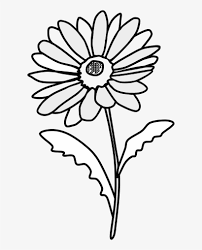 Big Daisy Wall Decals Gerbera Black And White Art Name Katie Oopsy Vamosrayos