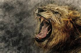 The Lion Has Roared - Songs In The Night