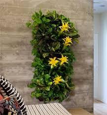 indoor wall garden making an vertical