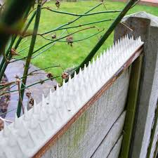 Fence Wall Spikes Anti Climb Security Spike Cat Birds Repellent Deterrent Ebay