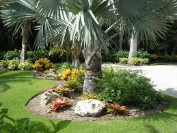 ujang ma landscaping ideas with palm trees