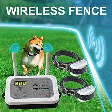 Top 10 Best Invisible Dog Fence To Buy In 2020 Detailed Reviews Wireless Dog Fence