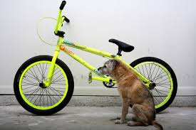 Aaron Ross Frame in Fluorescent Yellow | Tiong Hin Co Tyre - BMX Zone