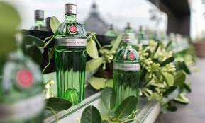 best gin brands of the world 2020 edition