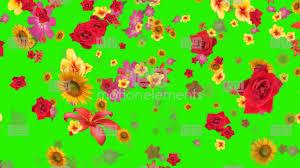 falling animation green screen effect