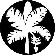 hawaiian orthography