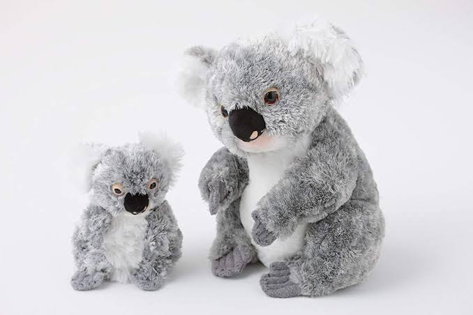 Best Australian Gifts to Bring Home for Your Beloved Family