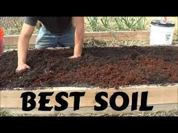 best soil for rasied garden bed you