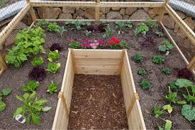 pin on raised flower bed