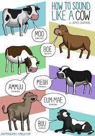 Bildergebnis für i versi degli animali