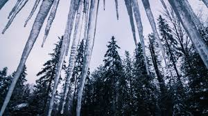 icicle wallpaper on hipwallpaper