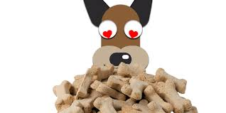 13 best dog treats in 2020 natural