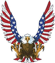Amazon Com American Bald Eagle With Flag Patterned Wing Feathers Vinyl Decal Sticker 8 Tall Arts Crafts Sewing