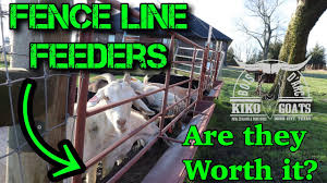Fence Line Feeders Easy Way To Feed Your Goats Meat Goats Best Feeder Kiko Meat Goats Youtube