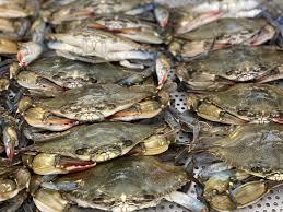 Seafood Market – Graham & Rollins, Inc.