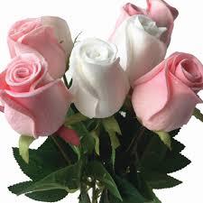 11p وردة بملمس طبيعي وردة وردي أزرق أسود أحمر أصفر أرجواني Pu ورود