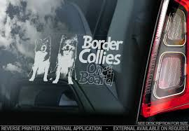Border Collies Car Sticker Sheepdog Window Decal Bumper Sign Dog Pet Gift V08 Ebay