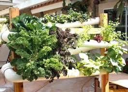 backyard hydroponics easy everything